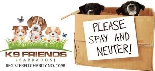Ocean Acres Animal Sanctuary support spay and neuter