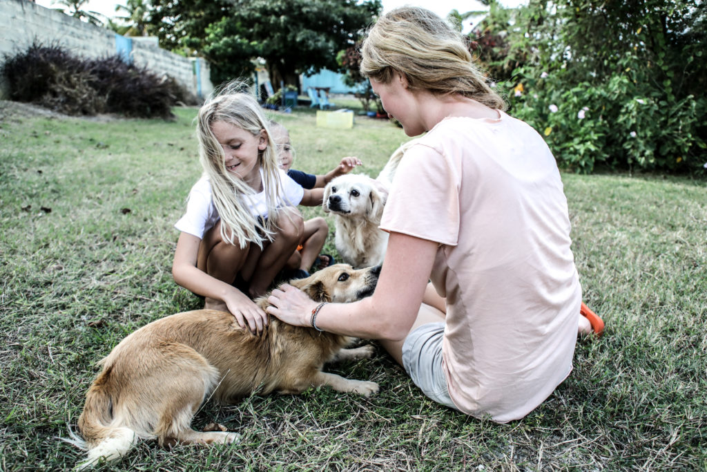 woman and child playing with dogs and cats at sanctuary
